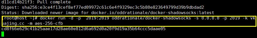 用Docker搭建VPN (6)