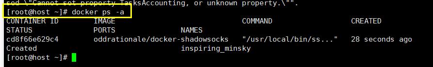 用Docker搭建VPN (7)